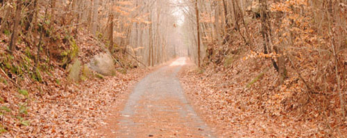 Tobacco Heritage Trail Header